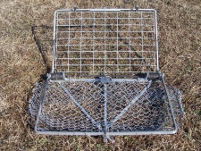 how to catch a beaver in a live trap